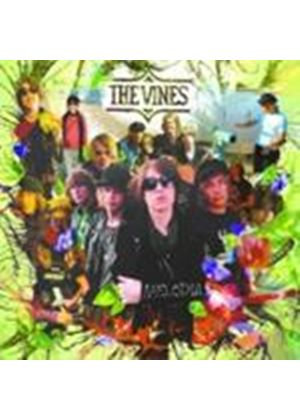 The Vines - Melodia (Music CD)