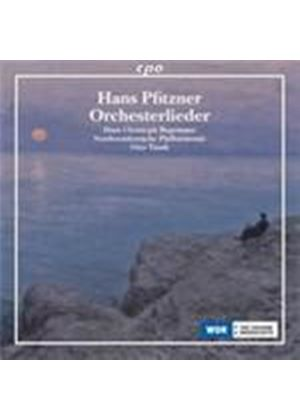 Pfitzner: Orchestral Songs (Music CD)
