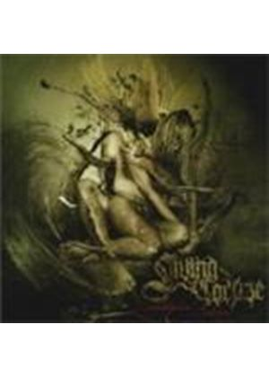 Living Corpse - Metaphysical Collapse (Music CD)