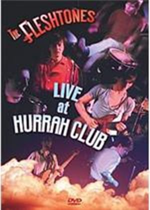 Fleshtones - Live At The Hurrah Club