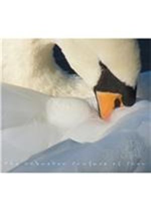 Andrew Cronshaw - Unbroken Surface Of Snow (Music CD)