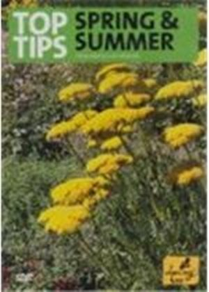 Top Tips For Spring And Summer