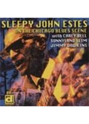 Sleepy John Estes - Electric Sleep