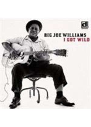 Big' Joe Williams - I Got Wild