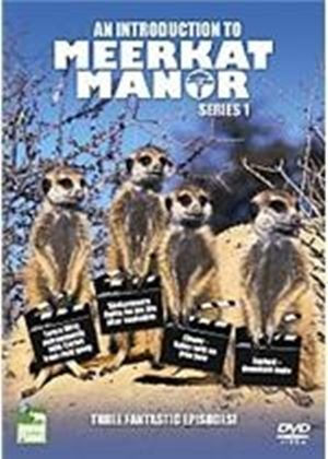 Introduction To Meerkat Manor