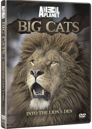 Discovery Channel - Big Cats - Into The Lions Den