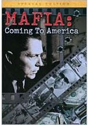 Mafia: Coming To America – 3 DVD Collectors Tin