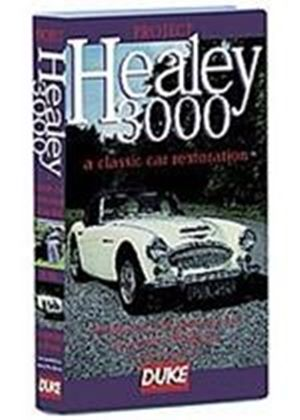 Project Healey 3000