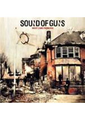 Sound Of Guns - What Came From Fire (Music CD)