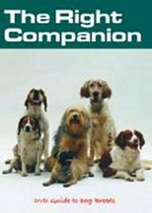 Right Companion DVD Guide To Dog Breeds, The