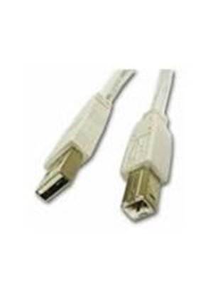 Cables To Go 2m USB 2.0 A/B Cable (White)