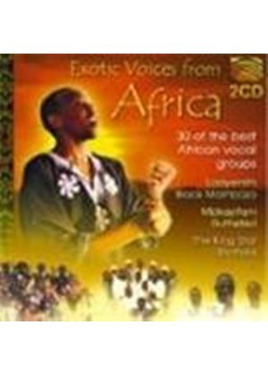 Various Artists - Africa - Exotic Voices From Africa