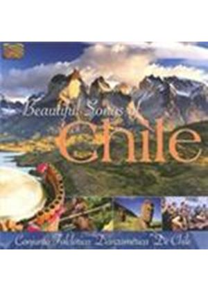 Conjunto Folclorico Danzamerica De Chile - Beautiful Songs Of Chile (Music CD)