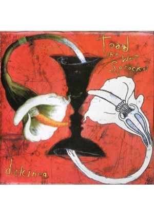 Toad the Wet Sprocket - Dulcinea (Music CD)