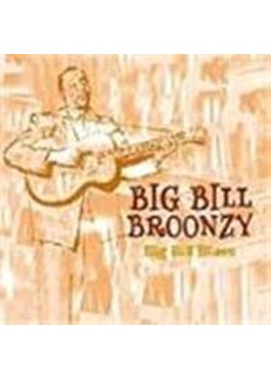 'Big' Bill Broonzy - Big Bill Blues