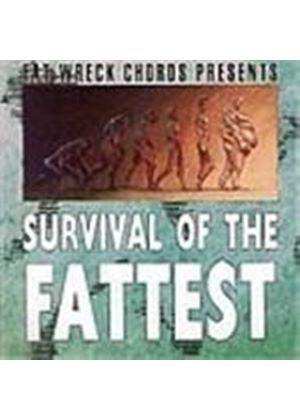 Various Artists - Survival Of The Fattest (Music Cd)