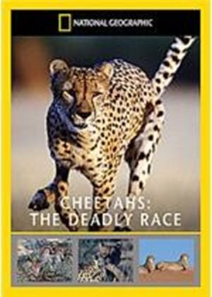 National Geographic - Cheetah's - The Deadly Race