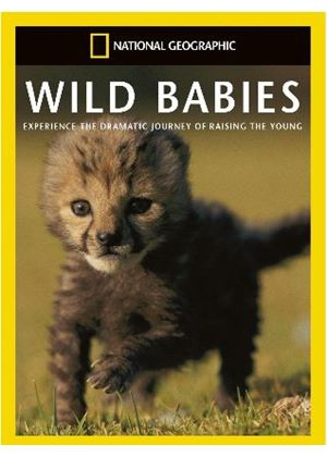 National Geographic - Wild Babies