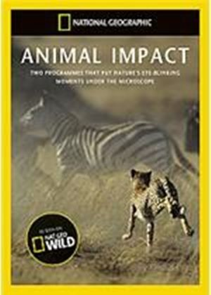 National Geographic - Animal Impact