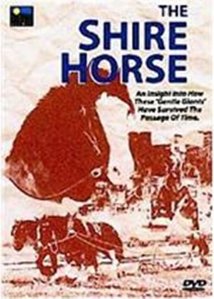 Shire Horse, The