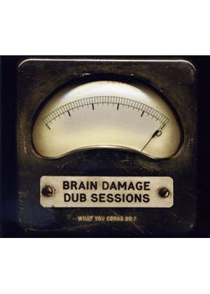 Brain Damage Dub Sessions - What You Gonna Do? (Music CD)