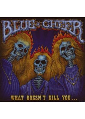Blue Cheer - What Doesnt Kill You (Music CD)