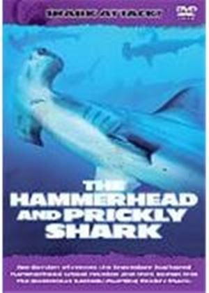 Shark Attack - The Hammerhead And Prickly Shark