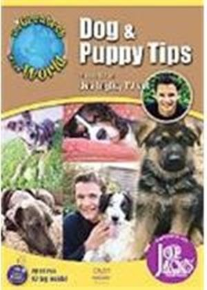 Greatest Dog And Puppy Tips In The World