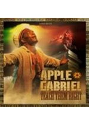 Apple Gabriel - Teach Them Right (Music CD)