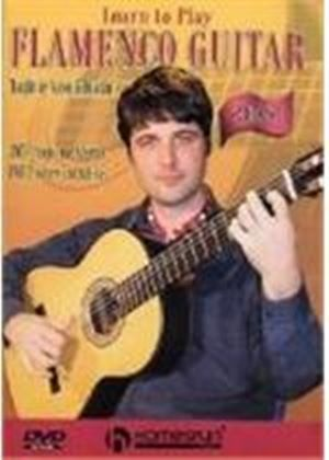 Learn To Play Flamenco Guitar (Two Discs)