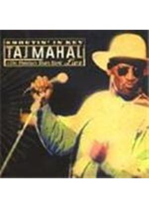 Taj Mahal - Shoutin' In Key (Live)