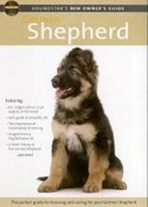 Houndstars New Owners Guide To The German Shepherd