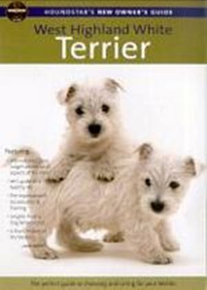 Houndstars New Owners Guide To The Westhighland White Terrier