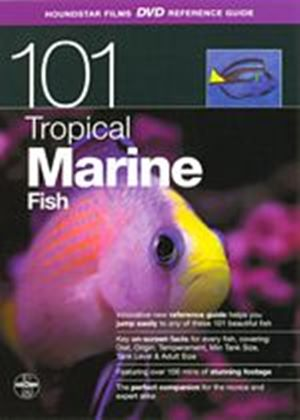 101 Tropical Marine Fish