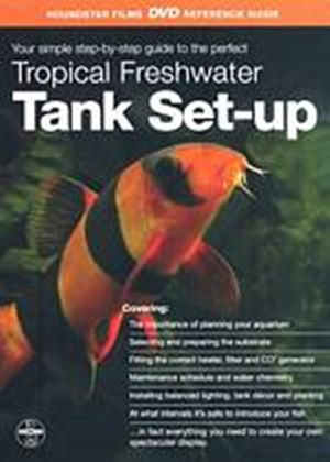 Tropical Freshwater Tank Set-Up