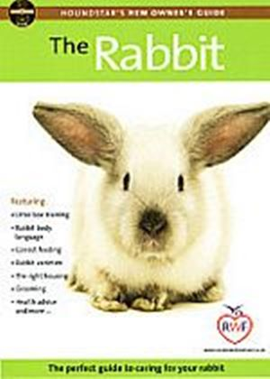 Rabbit - Perfect Guide To Caring For Your Rabbit, The