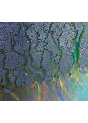 Alt-J - Awesome Wave (Music CD)