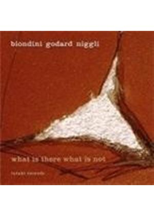 Luciano Biondini & Michel Godard/Lucas Niggli - What Is There What Is Not (Music CD)
