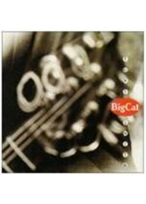 Tony Smith - Big Cat