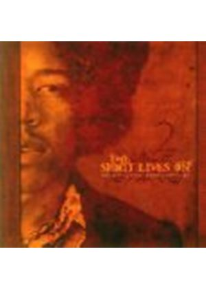 Various Artists - The Music of Jimi Hendrix Revisited (Music CD)