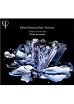 Bach: Motets BWV 225-230 (Music CD)