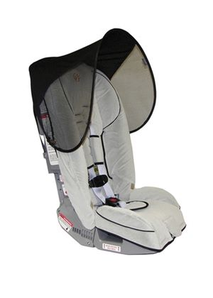 Car Seat and Stroller Shade