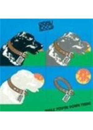 Stray Dog - While You're Down There (Expanded Edition) (Music CD)