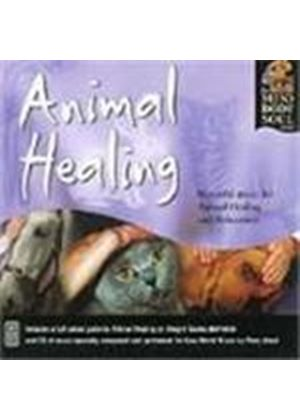 Perry Wood - Animal Healing