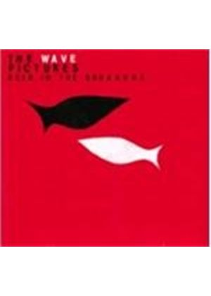 Wave Pictures (The) - Beer In The Breakers (Music CD)
