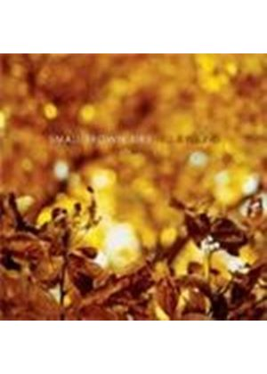 Small Brown Bike - Fell And Found (Music CD)