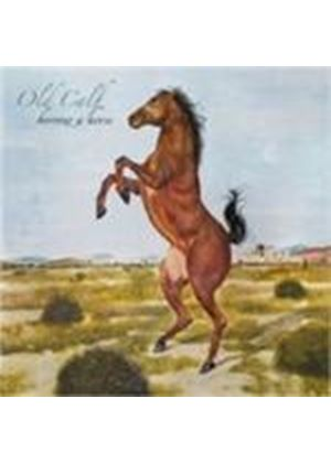 Old Calf - Borrow A Horse (Music CD)