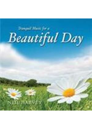 Neil Harvey - Beautiful Day (Music CD)