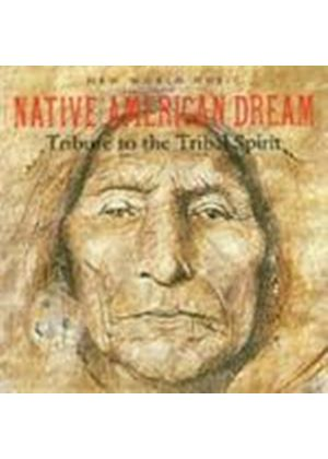 Various Artists - Native American Dream