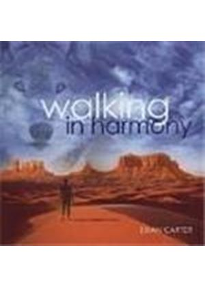 Brian Carter - Walking In Harmony